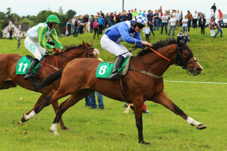 HORSE AND PONY RACING:  Conlon gains memorable win