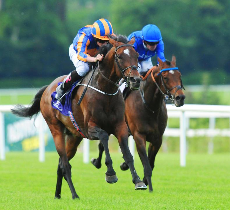 LEOPARDSTOWN FRIDAY: St George warms up for Ascot