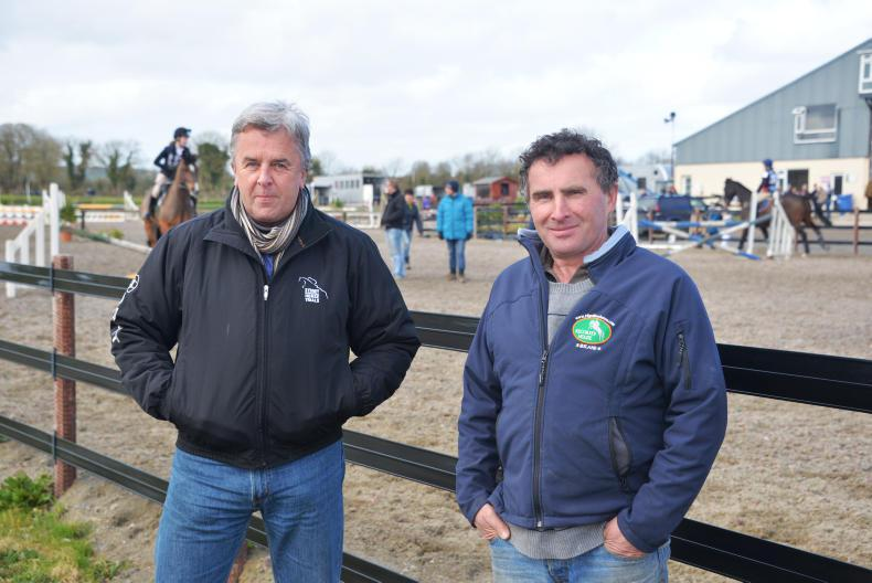 PONY TALES:  Duloherys pulling out all the stops at Kilguilkey