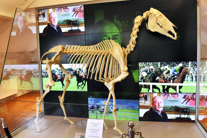 AROUND THE COUNTRY:  Horse museum set to be a galloping success