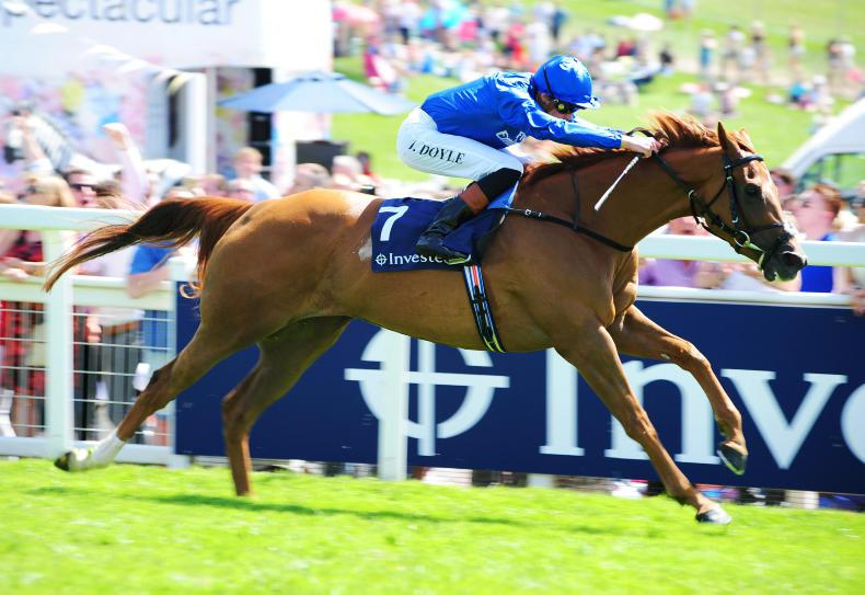 PEDIGREE NOTES: Dubawi filly has Group 1 potential