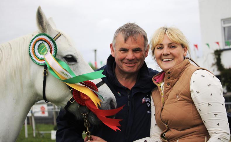 Alaoise's pride and joy wins at golden Westport