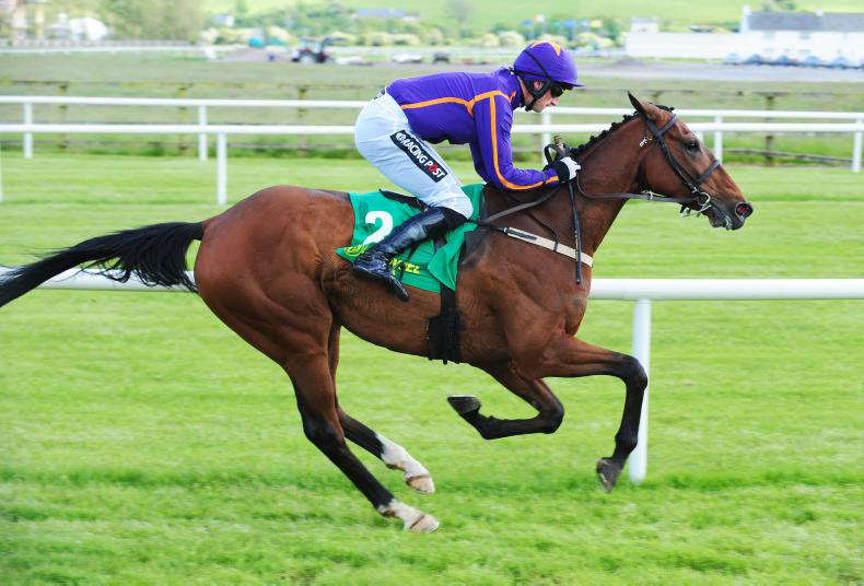 Sir Mark Prescott's St Michel denied by Red Cardinal in Belmont Gold Cup