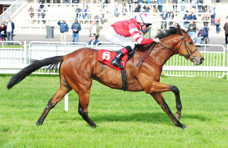 'Big future' predicted for impressive Curragh winner Verbal Dexterity