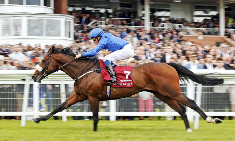 Ribchester is the world's third best racehorse