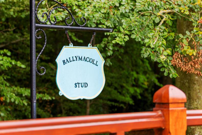 Ballymacoll Stud to be auctioned next month