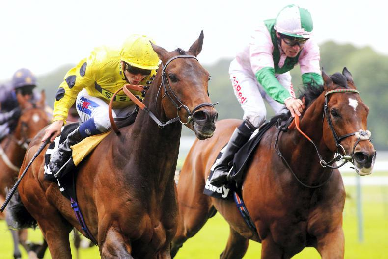 PEDIGREE NOTES: Grade 1 double for Galileo stallions