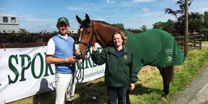 EVENTING: Shannondale Icarus now Dublin bound