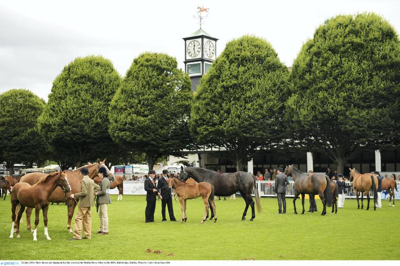 NEWS: Bumper entries for 2017 Dublin Horse Show
