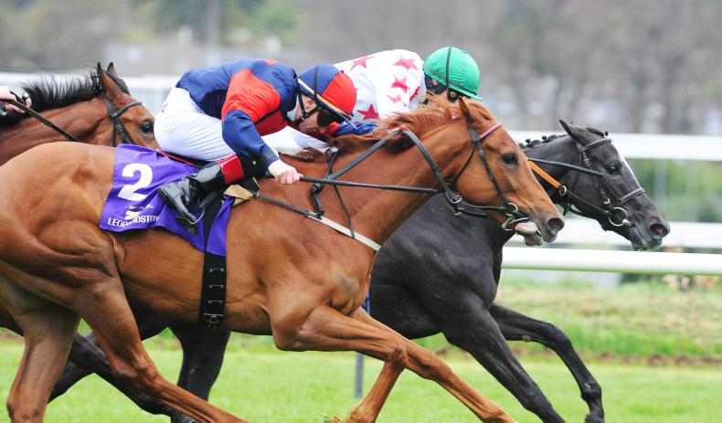 CORK SUNDAY: Bengala to give Oxx an Oaks