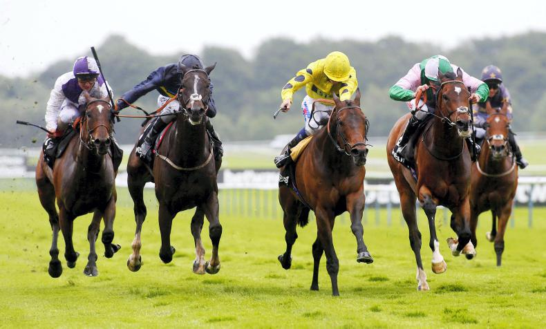 BRITAIN: French raider Bateel may have Champions Day target