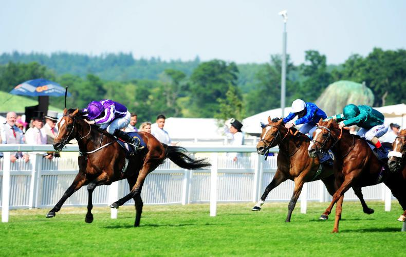 Highland Reel toughs it out in Prince of Wales's Stakes