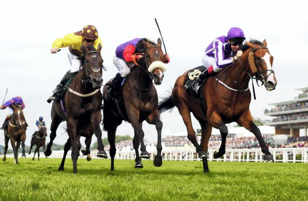Irish Champion Stakes for Leading Light