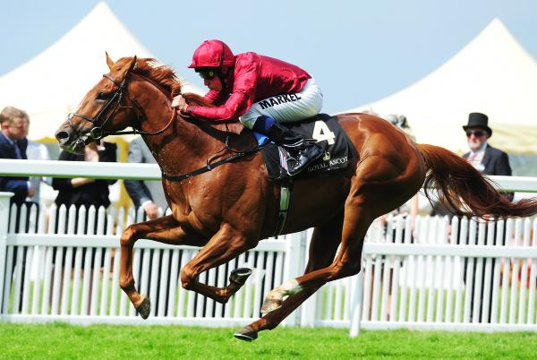 Eagle Top may well be a Group 1 horse