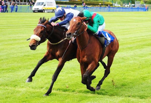 Talking Trainers: Curragh Special - The Curragh contenders