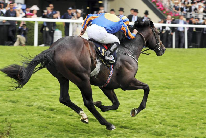 ROYAL ASCOT THURSDAY: Sioux Nation on the warpath