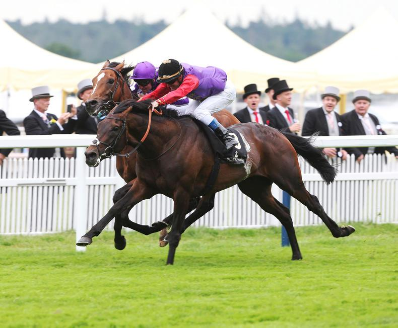 ROYAL ASCOT TIPS: Your free guide to the final day at Royal Ascot