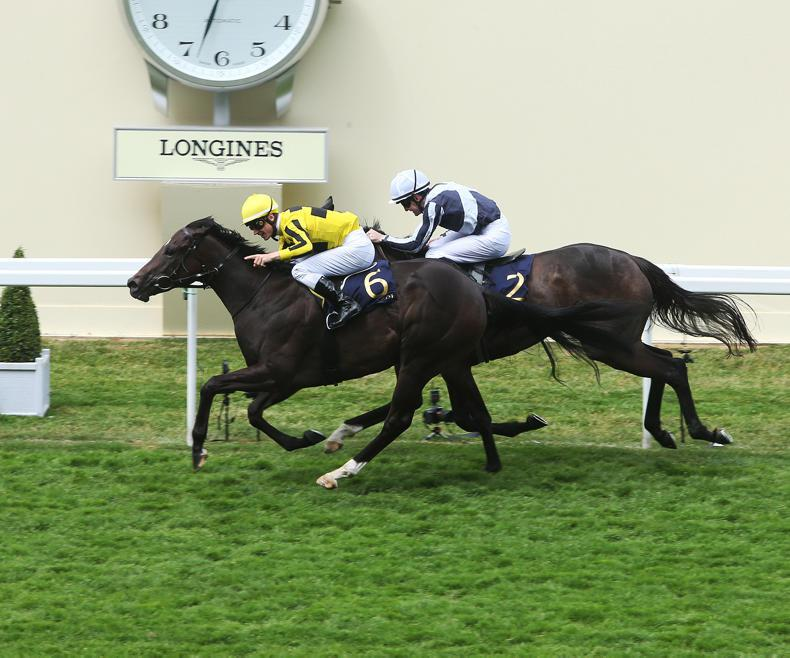 ROYAL ASCOT FRIDAY: Marnanes have a filly in a Different League