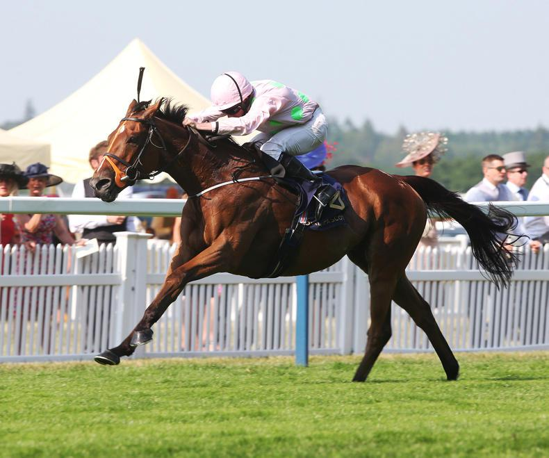 Royal Ascot winner Thomas Hobson back for more in Queen Alexandra Stakes