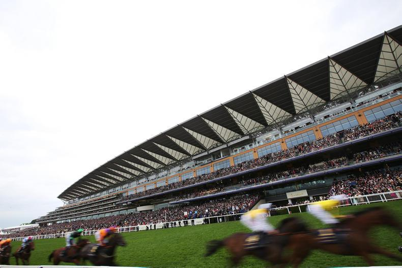ROYAL ASCOT: Pedigrees of the blacktype winners