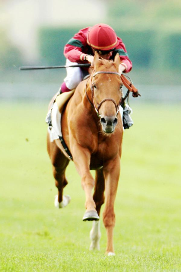Prince should be the Arc favourite