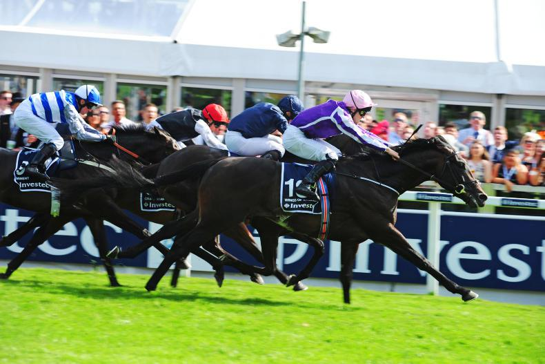 NEWS: Wings Of Eagles ready for flight to second Derby