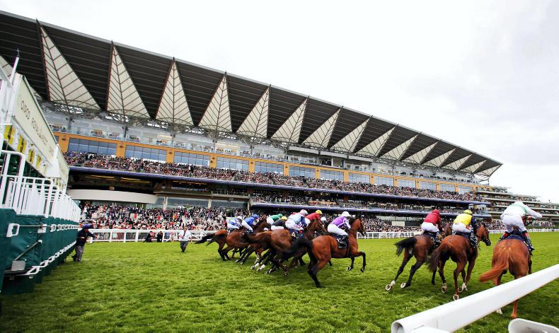 ROYAL REFLECTIONS: Looking back at the Ascot highlights