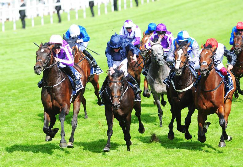 Epsom ace Wings Of Eagles heads Aidan O'Brien quintet in Irish Derby at Curragh