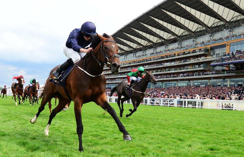 ROYAL ASCOT: September makes it 60 for O'Brien