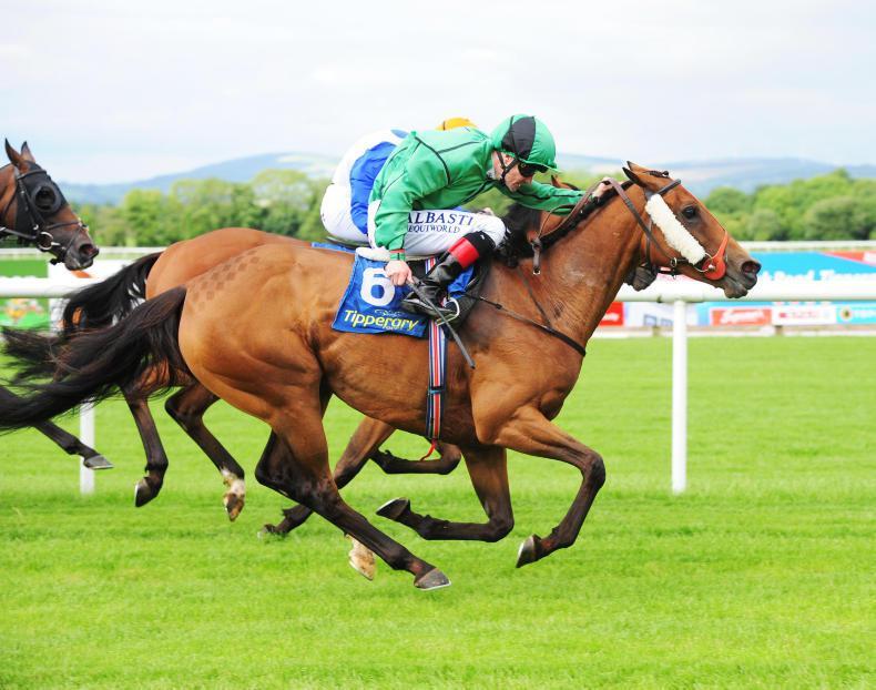 Double delight for Colm O'Donoghue at Ballinrobe