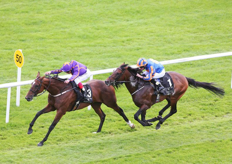 CURRAGH SUNDAY: Wicklow can Brave it from the front again