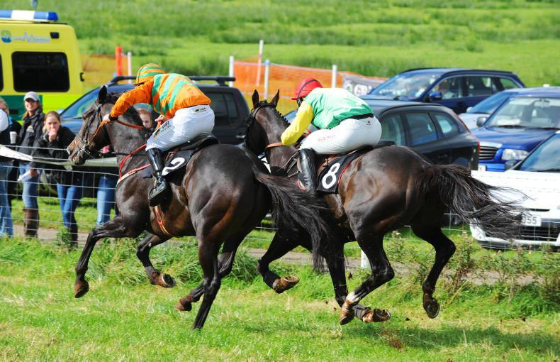 Autumn point-to-point fixtures published