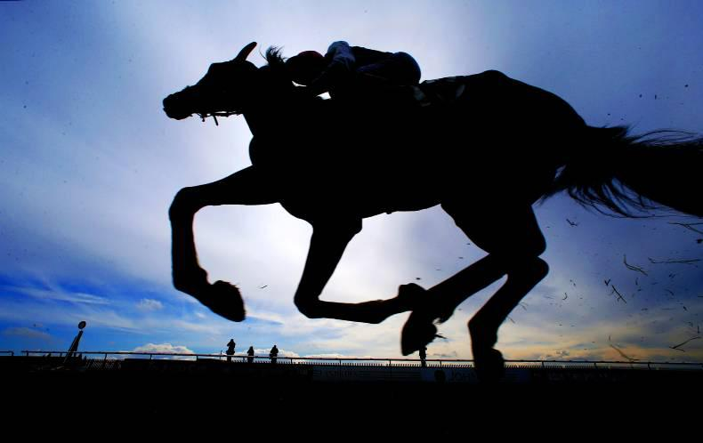 NEWS IN BRIEF: More racing and breeding stories from the July 1st edition