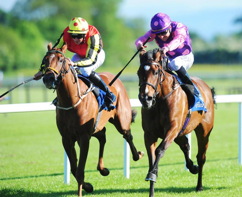 PEDIGREE NOTES: Group/Grade 1 wins for four European sires