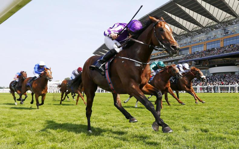 SIMON ROWLANDS: Did watering cause a track bias at Royal Ascot?