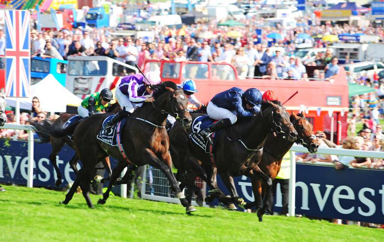 CURRAGH SATURDAY: Wings set to fly again