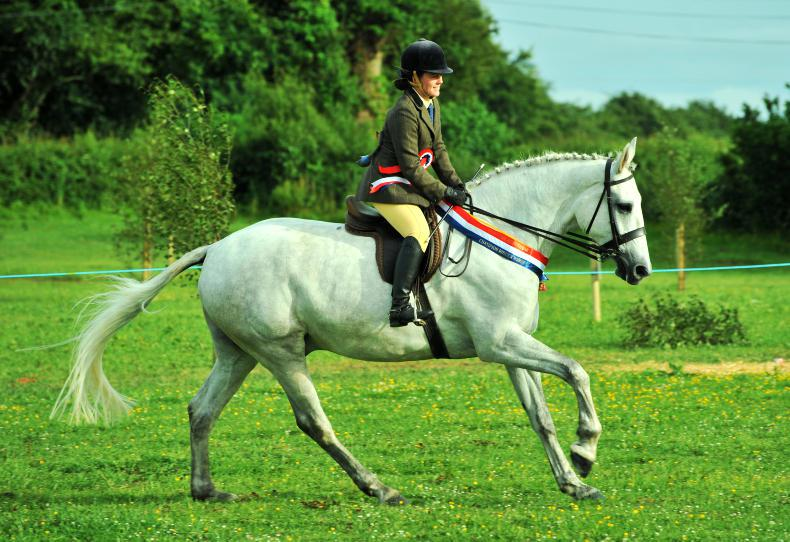 AROUND THE COUNTRY: Bumper crowd at thriving Athlone show