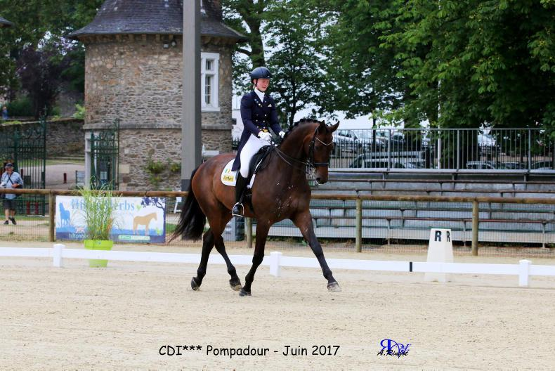 INTERNATIONAL: Irish dressage riders out in force
