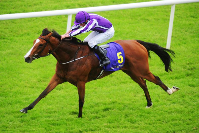 Aidan O'Brien raises doubts about Minding track return