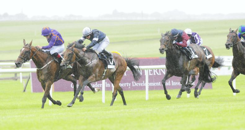 CURRAGH SUNDAY: Rekindling back on track and now has Leger assignment