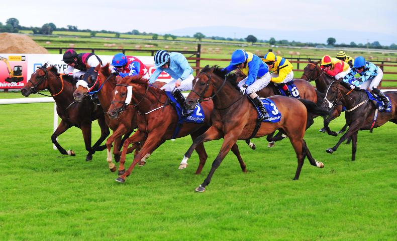 MARGIE McLOONE: Ideal trip discovered for Bien Chase