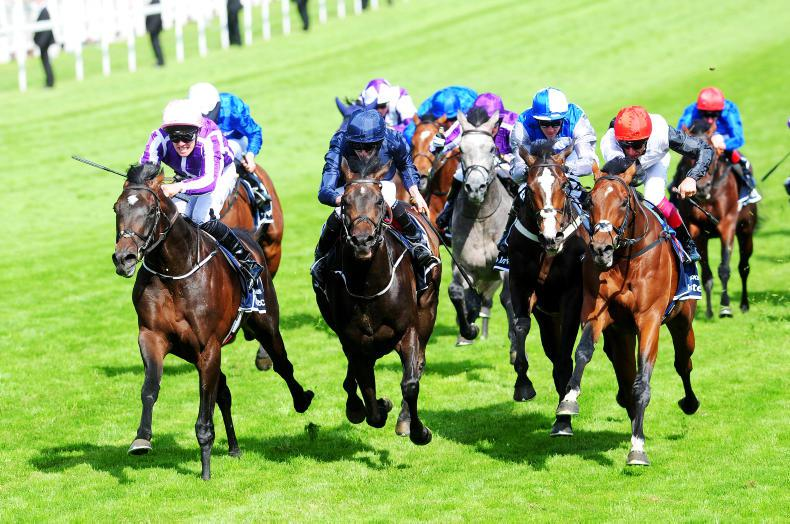 DONN McCLEAN: Epsom Derby form looks solid