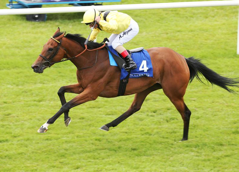 PEDIGREE NOTES: Superb weekend for Dubawi and Galileo