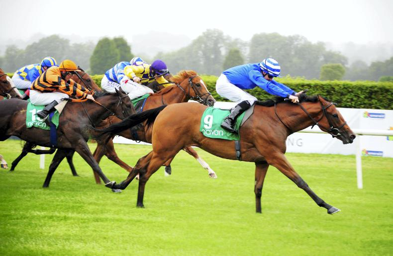 NAAS SATURDAY: Consistent Clarinet tuned up for another big run