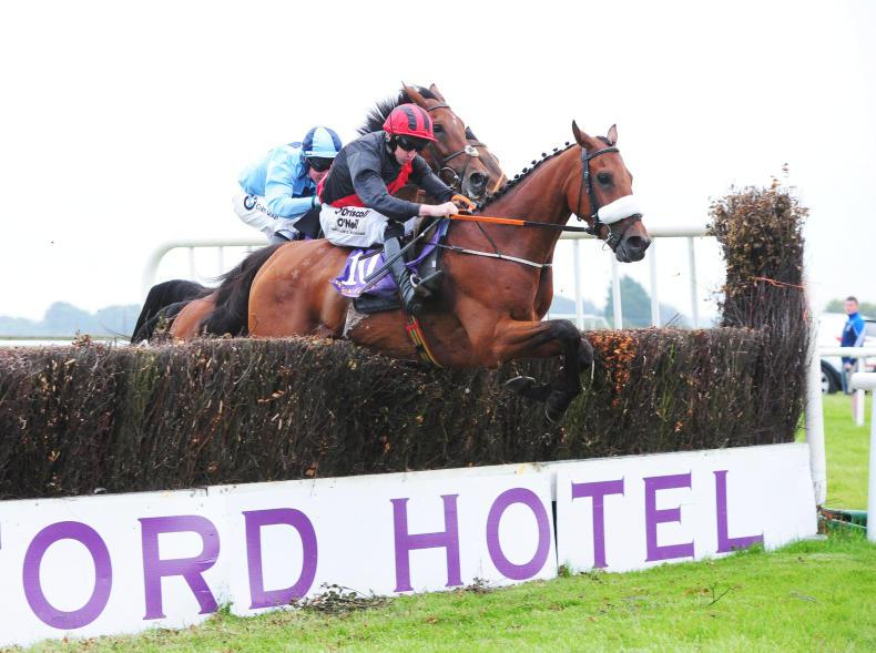 Peregrine Run completes Wexford double for Peter Fahey