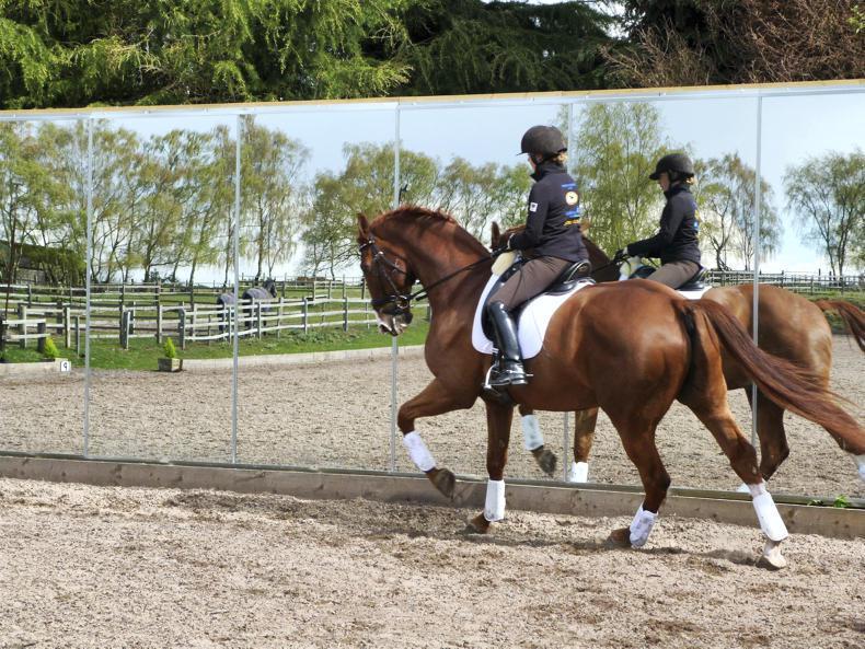 HORSE SENSE: Coach Traineeship Course - formerly BHSAI