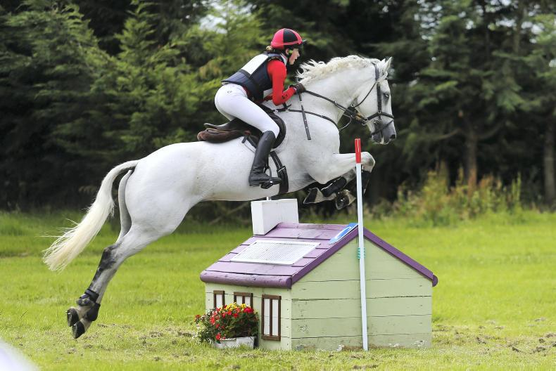 PONY CLUB:  Baker's dozen at Stradbally Hall