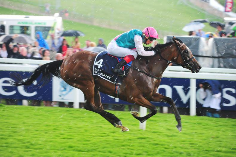 CURRAGH SATURDAY: Enable is a confident choice
