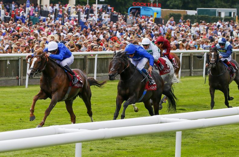 BRITAIN: Hawkbill strongest as Godolphin dominate