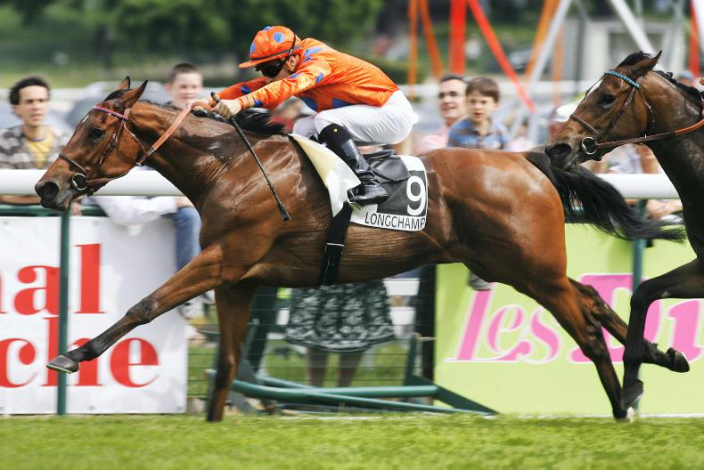 JRHA SALE: Foal out of French Guineas winner sells for almost €4.5 million